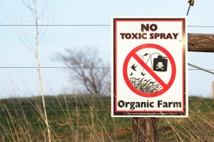 Aside from its other benefits to our health and environment, organic agriculture -- which eschews synthetic pesticides and fertilizers -- can potentially reduce overall greenhouse gas emissions by 20% compared to conventional farming. Photo: CinCool, courtesy Flickr