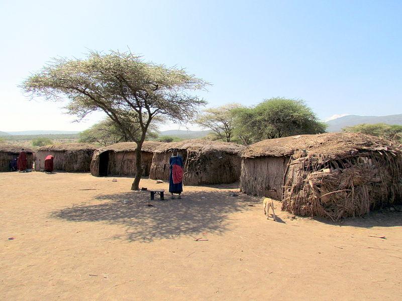 Massai village in Tanzania. Photo by David Berkowitz. Wikimedia Commons.
