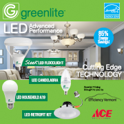 Greenlite Web Ad