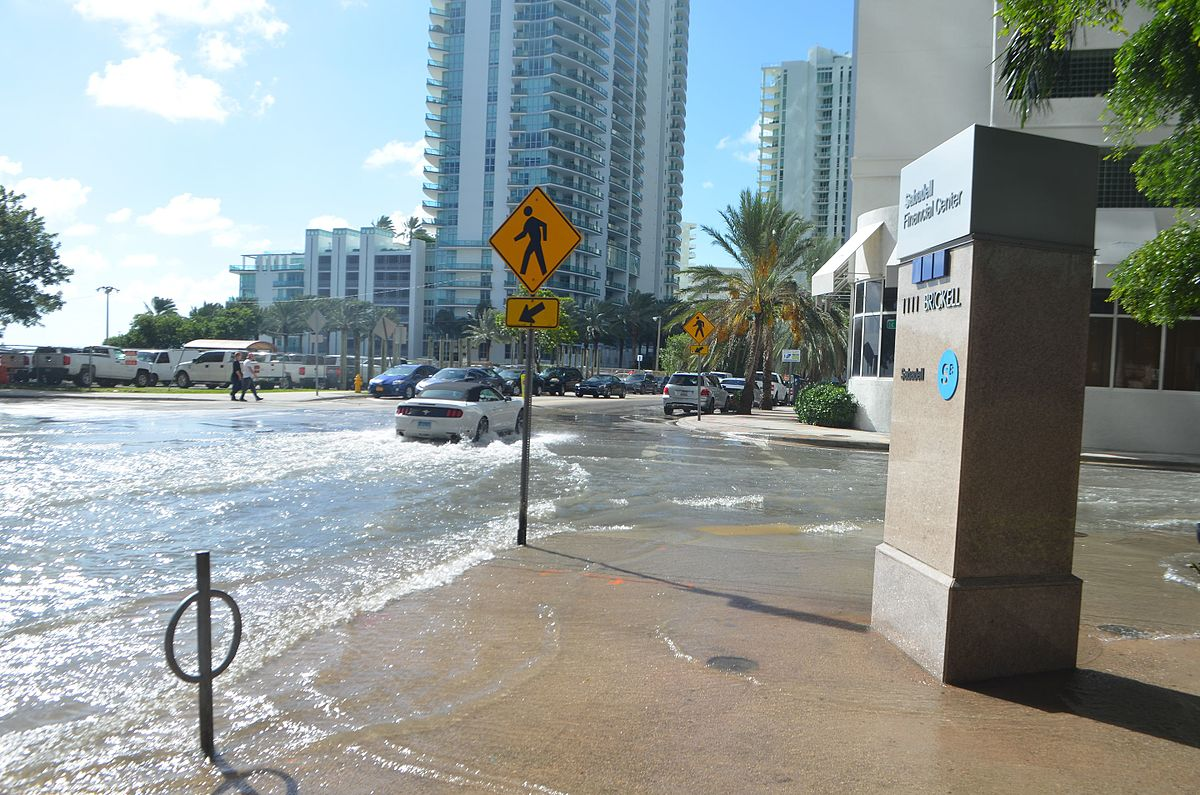 Sunny day flooding is now a regular occurrance in Miami, thanks to sea levels rising. (Photo by B137, CC BY SA, Wikimedia Commons)