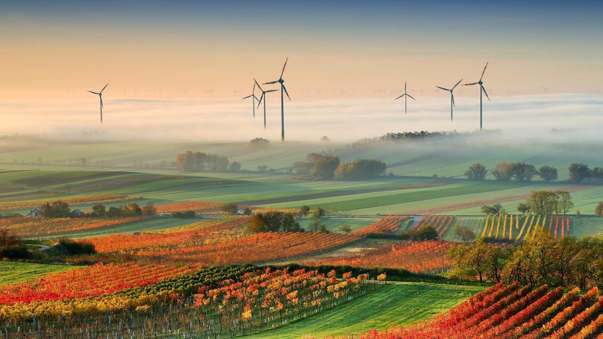 Wind turbines in Edelstal, Austria (Photo: Matej Kova, National Geographic)